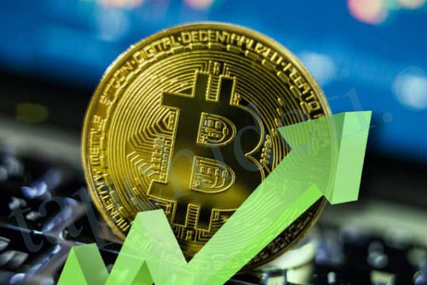 Crypto Market Oct 12 Bitcoin corrects gains while altcoins show
